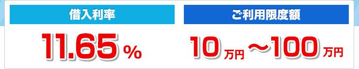 借入利率11.65% ご利用限度額10万~100万円
